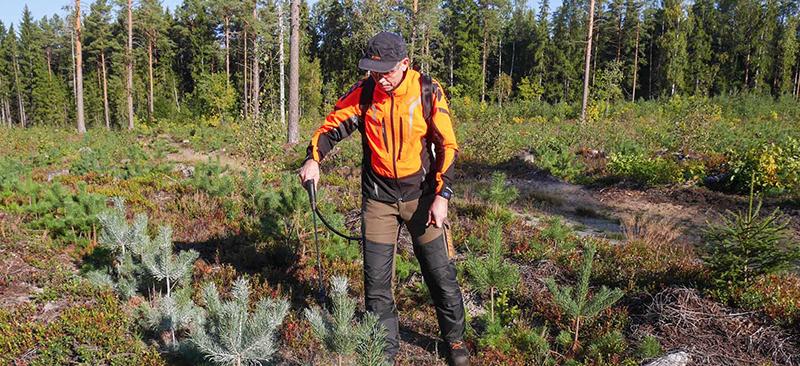 Metsatööd sügisel Metsaomanik Sander blogi Metsaühistu